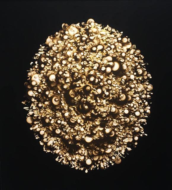 , 'Golden Egg,' 2017, Corkin Gallery
