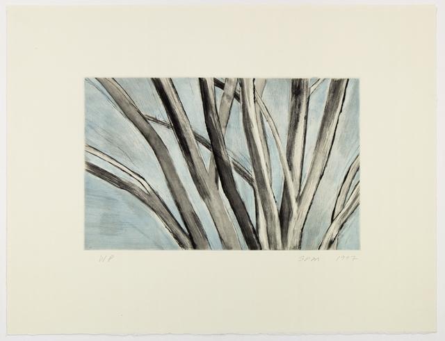 , 'Winter Elm,' 1997, Senior & Shopmaker Gallery