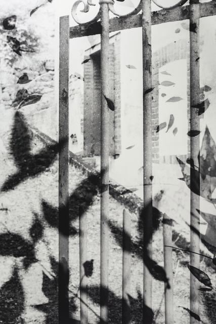 Muriel Hasbun, '¿Sólo una sombra?/ Only a Shadow? (The Gate III)', 1995, Photography, Selenium toned gelatin silver print on Forte Polywarm Semi-matte, RoFa Projects