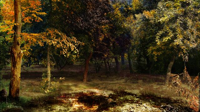 , 'Forest,' 2009, Bhau Daji Lad Museum