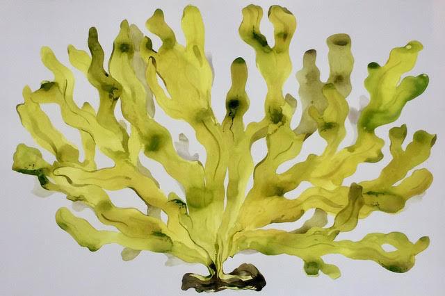 , 'Big Yellow Seaweed,' 2018, ARC Fine Art LLC