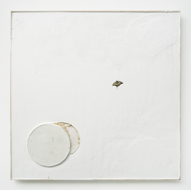 , 'proof of evidence (butterfly),' 2013, carlier | gebauer