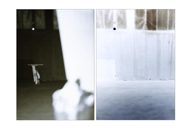 , 'La Parabole des Aveugles, Diptyque #20 ,' 2012, Galerie Christophe Gaillard