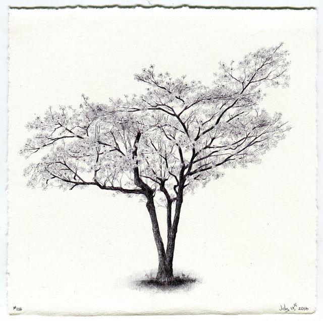 , 'Tree No. 116, July 17, 2016,' 2016, Garvey | Simon