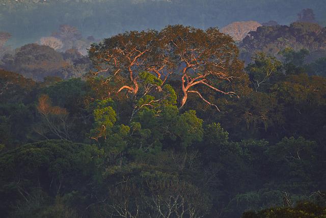 ", '""Parque Cristalino""Alta Floresta, MT,' 2013, Fotospot"