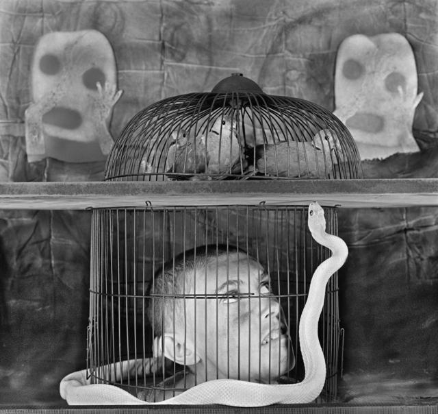, 'Caged,' 2011, CHRISTOPHE GUYE GALERIE