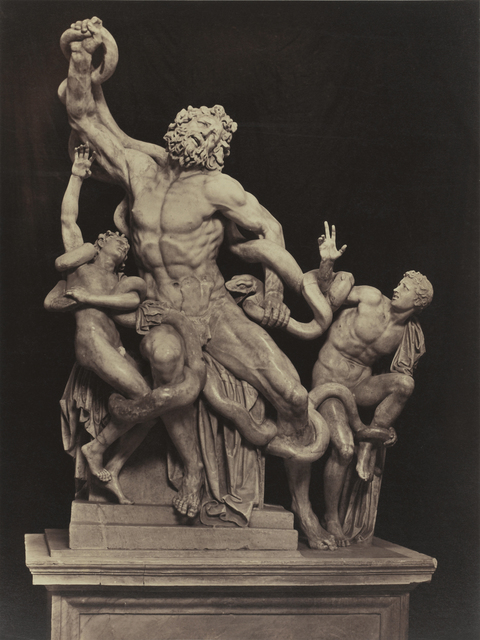 , 'Laocoön, Roma,' ca. 1855, Daniel Blau