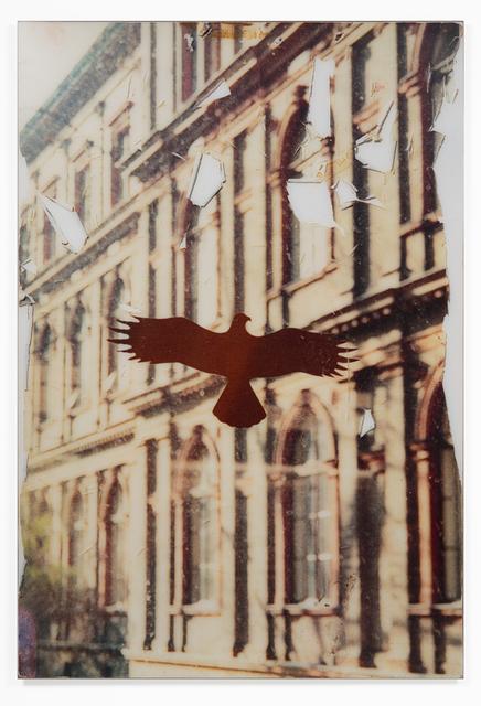 , 'Bird Vienna,' 1996-2014, Andréhn-Schiptjenko