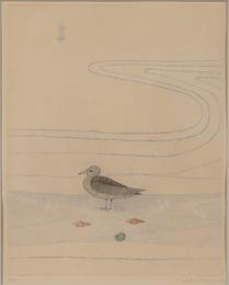 Bird Along the Shore