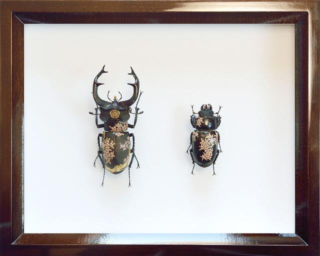 , 'K0317 Toyotomi,' 2017, Aki Gallery