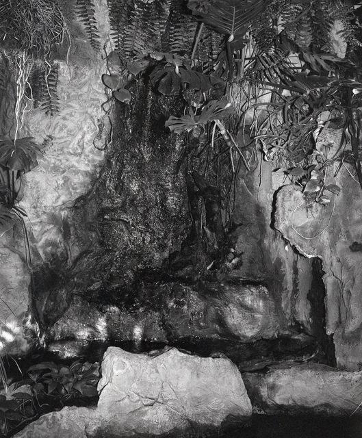 , 'Enclosure XIV,' 2019, Madragoa