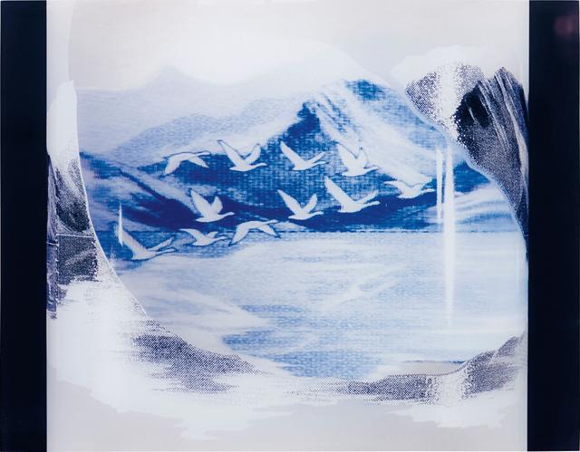 Piotr Uklanski, 'Untitled (Grey Goose)', 1998, Phillips