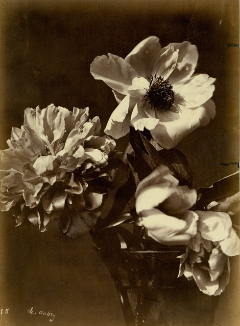 , 'Flower Arrangement (#15),' ca. 1860, Robert Klein Gallery