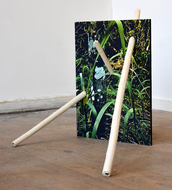 , 'Untitled (MDW037),' 2015, Asya Geisberg Gallery