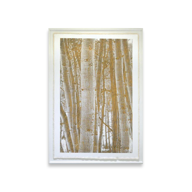 , 'Aspen Woodlands,' , Exhibit by Aberson