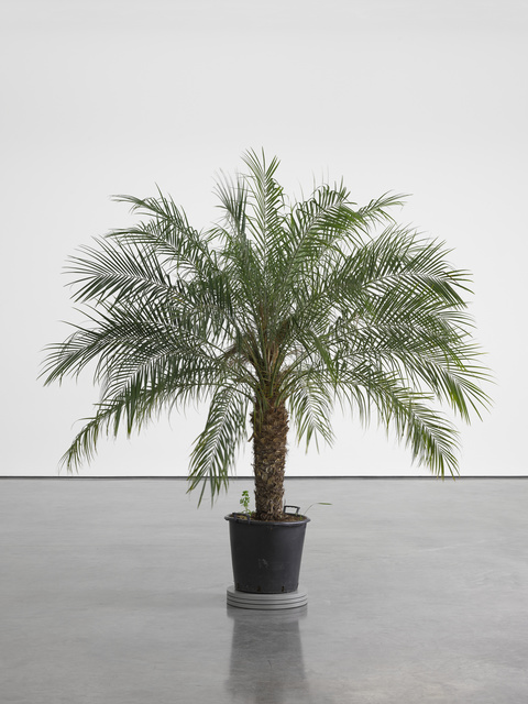 , 'Still life (In course of arrangement...) III,' 2015, White Cube