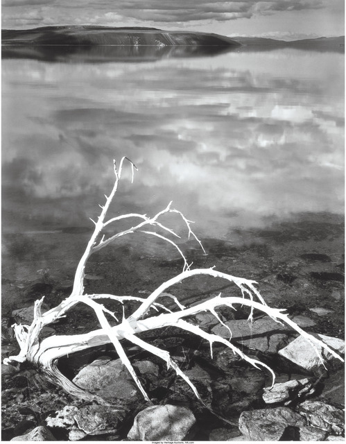 Ansel Adams, 'White Branches, Mono Lake, California', 1950, Heritage Auctions
