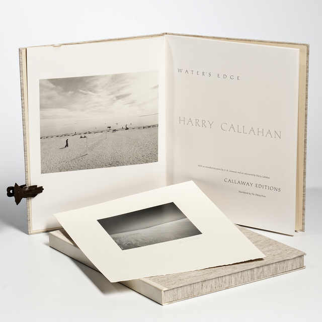 Harry Callahan, 'Cape Cod', 1974-printed 1980, Photography, Gelatin silver print mounted to card, Skinner