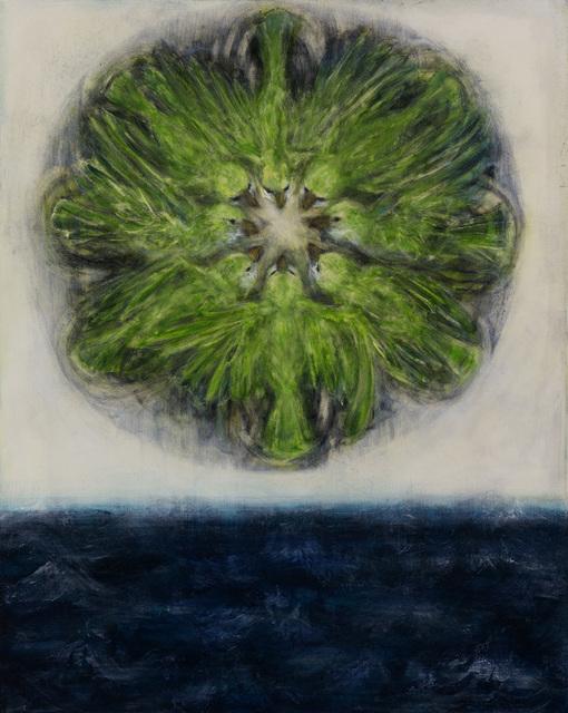 , 'Mandala (Monk Parakeet),' 2007, Woodward Gallery
