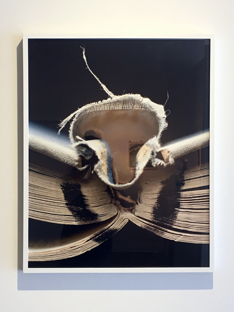 , 'Book 01, Framed,' 2008, Duane Reed Gallery