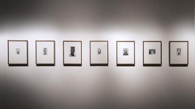 , 'serie Covered completa,' 2012, Galería del Paseo
