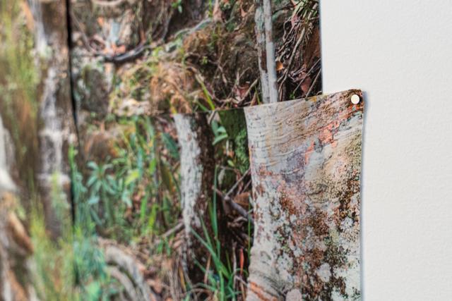 Marcos Chaves, 'Cristais 1 ', 2016, Print, Digital print on silk, Nara Roesler