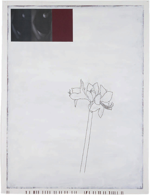 ", '""Woman, Plant, Bordeaux and White"",' 2008-2009, Cristina Guerra Contemporary Art"