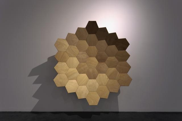 Carlos Nicanor, 'Aeonium lignum', 2015, Galería Artizar