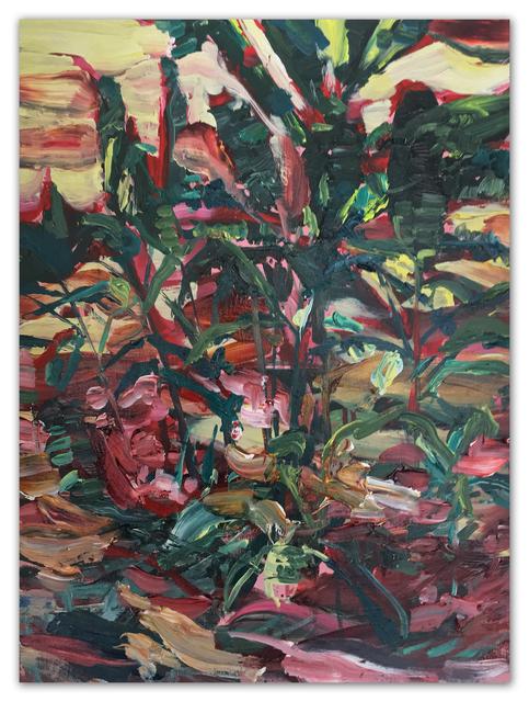", '""Untitled"" (Fairchild | No. 24),' 2017, PRIMARY"