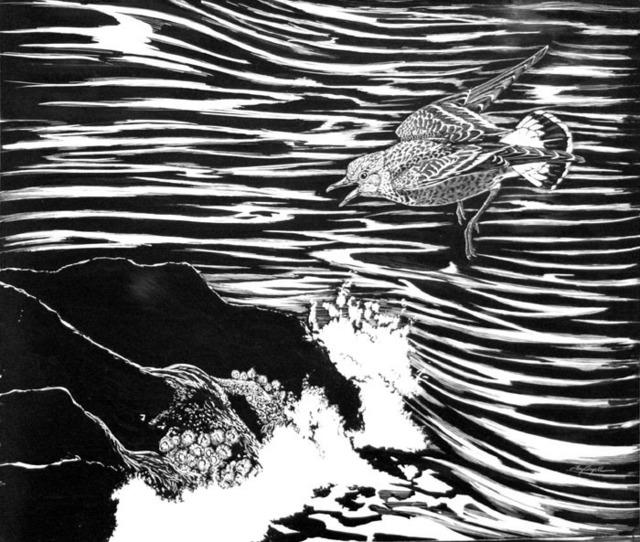 Tony Angell, 'Surfbird', 1982, Foster/White Gallery