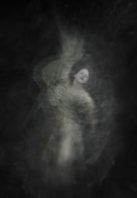 , 'Wisteria,' 2017, Paraphé
