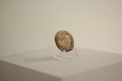 Rhino Coin