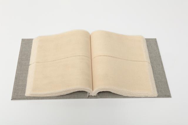 , 'Plotline,' 2017, Barry Whistler Gallery