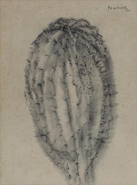 Akbar Padamsee, 'Cactus', 1982, Painting, Watercolor on paper, Museum of Art & Photography