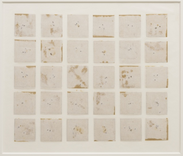 Michelle Stuart   Seed Calendar, River Tree (SBCA) (1993