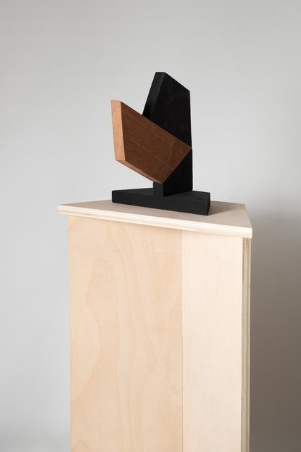 Laetitia Hussain, 'Untitled # 9', 2018, John Davis Gallery