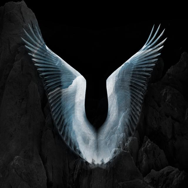 Eriko Kaniwa, 'Wings #5', 2019, ARTE GLOBALE