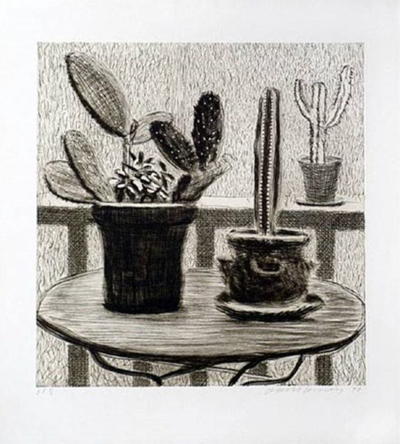 , 'Cacti on Terrace,' 1998, Lyndsey Ingram