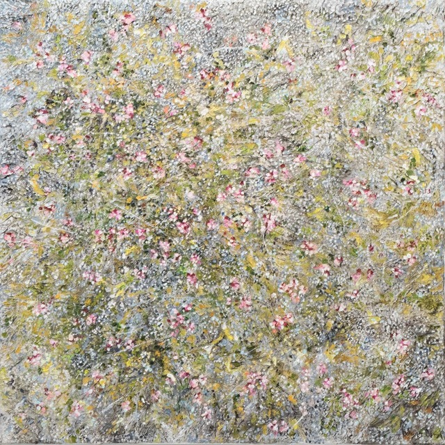 , 'Common high-plants species in the Icelandic flora.,' 2017-2018, Gallerí Fold