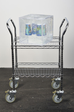 , 'Arbitrary Embodiment (A04),' 2014, Jessica Silverman Gallery