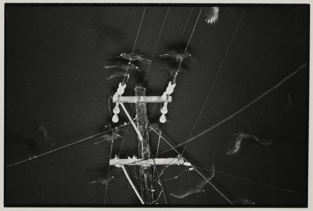 , 'Nayaro,' 1977, Gitterman Gallery