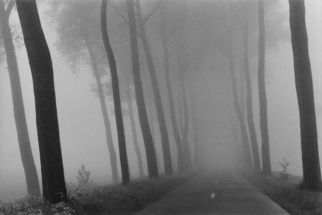 , 'Belgium, near Bruges,' 1975, GALLERY FIFTY ONE