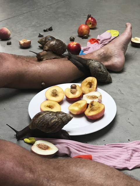 , 'Leg, snails and peaches,' 2017, Suzanne Tarasieve