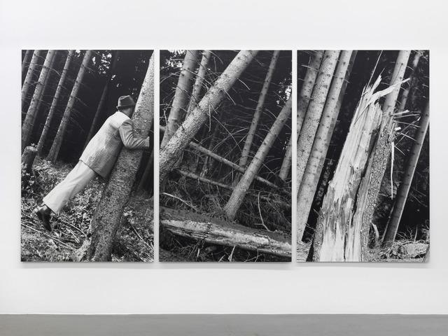 , 'Kontakt mit Bäumen,' 1987, Buchmann Galerie