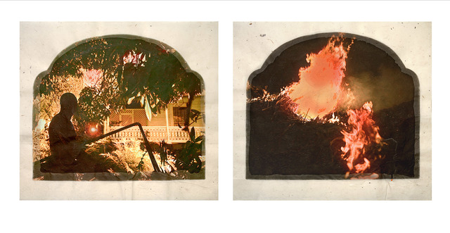 , 'Plantation (Diptych No. 12),' 2009, Roslyn Oxley9 Gallery