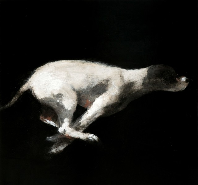 , 'Untitled (Perro),' 2008, Galerie Arcturus