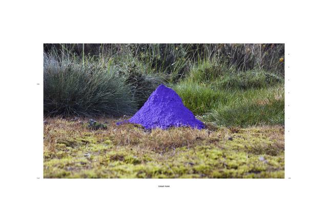 , 'Cobalt Violet 1520 ft. asi,' 2015, Galerie Heike Strelow
