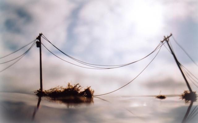 Vanessa Marsh, 'Telephone Poles', Julie Nester Gallery