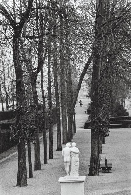 Edouard Boubat, 'Parc de saint Cloud', 1981, Holden Luntz Gallery
