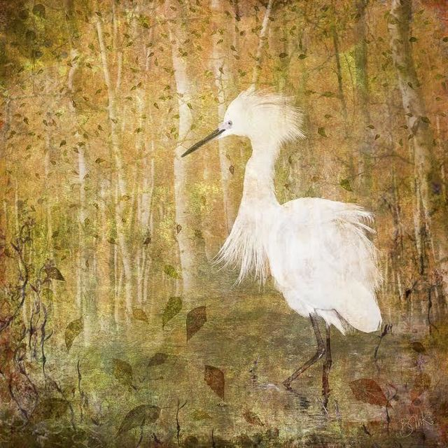 , 'Egret in the Aspen Forest,' 2017, Light Space & Time